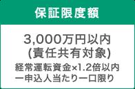 保証限度額 3000万円(経常運転資金x1.2倍以内)